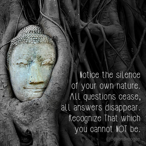 Notice the silence of your own nature. All questions cease, all answers disappear. Recognize that which you cannot NOT be.